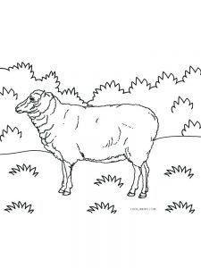 Easter Sheep Coloring Pages