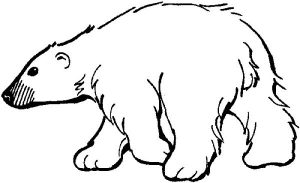 Easy Polar bear coloring page
