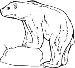 Easy Printable Polar Bear Coloring Pages