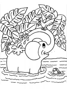 Elephant Coloring Pages Hard