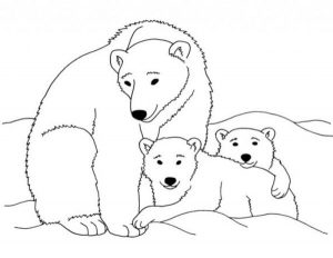 Family polar bear coloring pages for kids