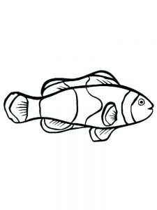 Fish Coloring Page Clip Art