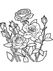 Flower And Rainbow Coloring Pages