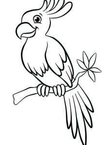 Flying Parrot Coloring Pages
