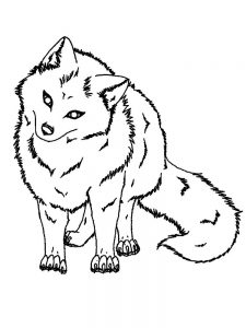 Fox Coloring Pages Momjunction