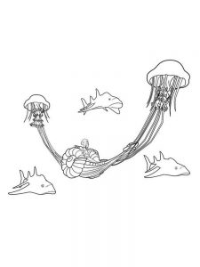 Free Coloring Pages Of Jellyfish