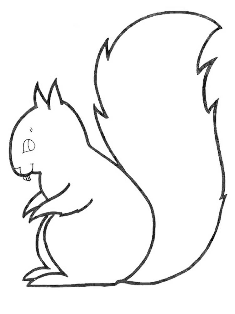 Free Coloring Pages Squirrel