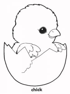 Free Easter Chick Coloring Pages pdf