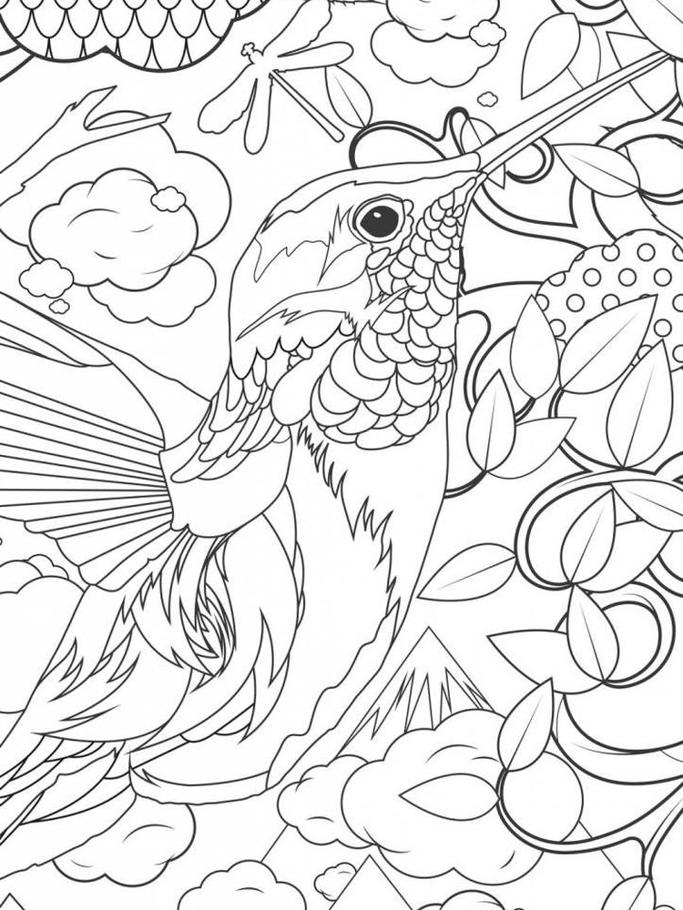 Free Hummingbird Coloring Pages