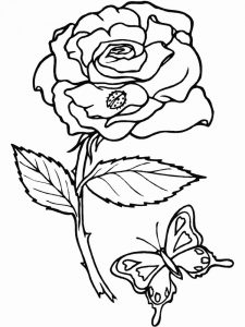 Free Insects Coloring Pages
