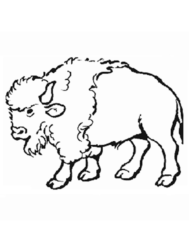 Free Printable Buffalo Bills Coloring Pages
