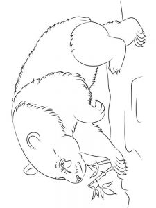 Free Printable Coloring Pages Panda Bears