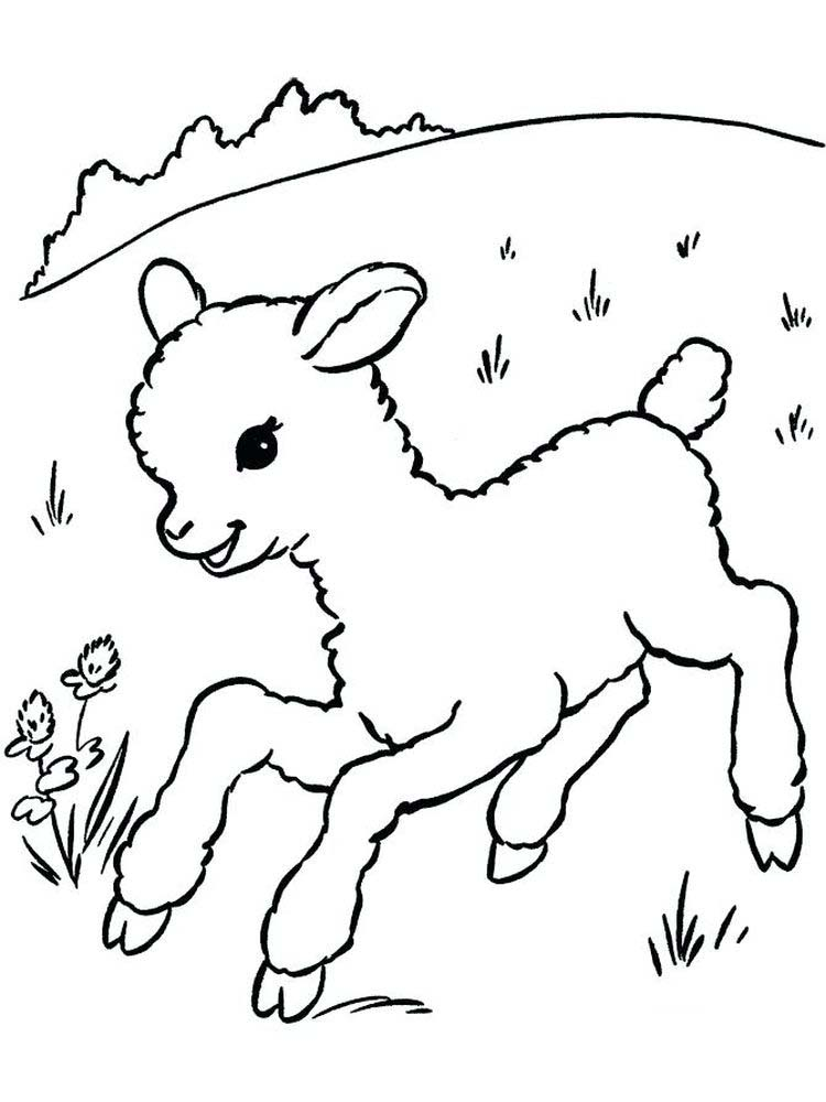 Free Sheep Coloring Pages For Toddlers
