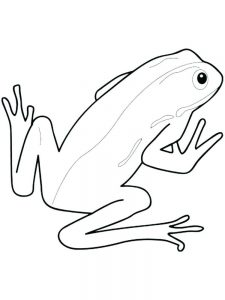 Frog And Lily Pad Coloring Pages