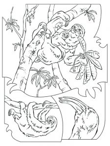 Giant Sloth Coloring Page