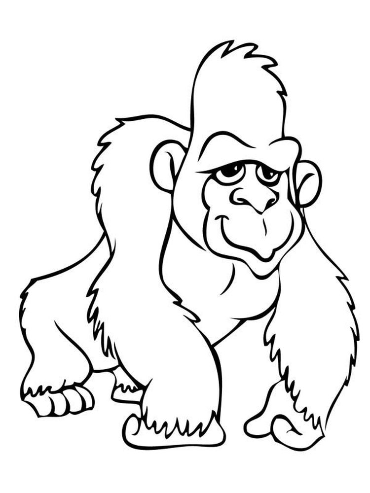 Gorilla Coloring Pages For Preschoolers
