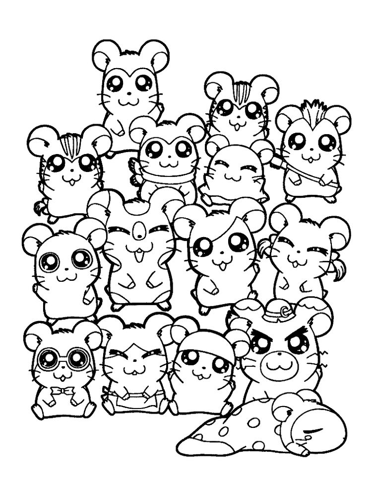 Hamster Coloring Pages To Print
