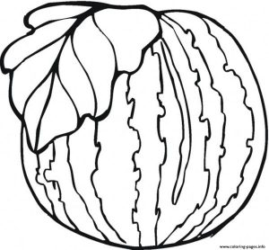 Healthy Watermelon Fruit Coloring Pages Printable