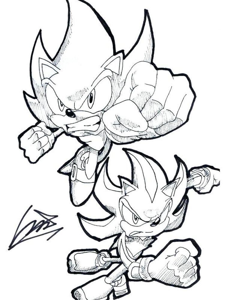 Hedgehog Coloring Pages Free