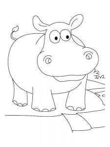 Hippo Coloring Pages Easy