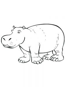 Hippo Coloring Pages For Preschoolers