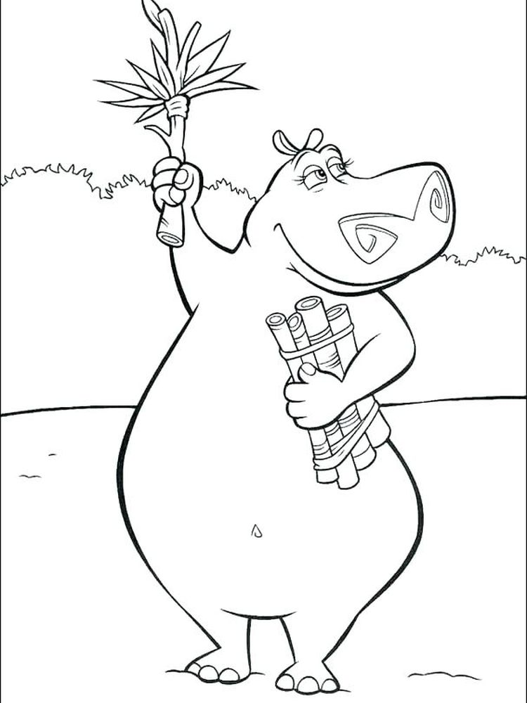 Hippo Colouring Pages Free
