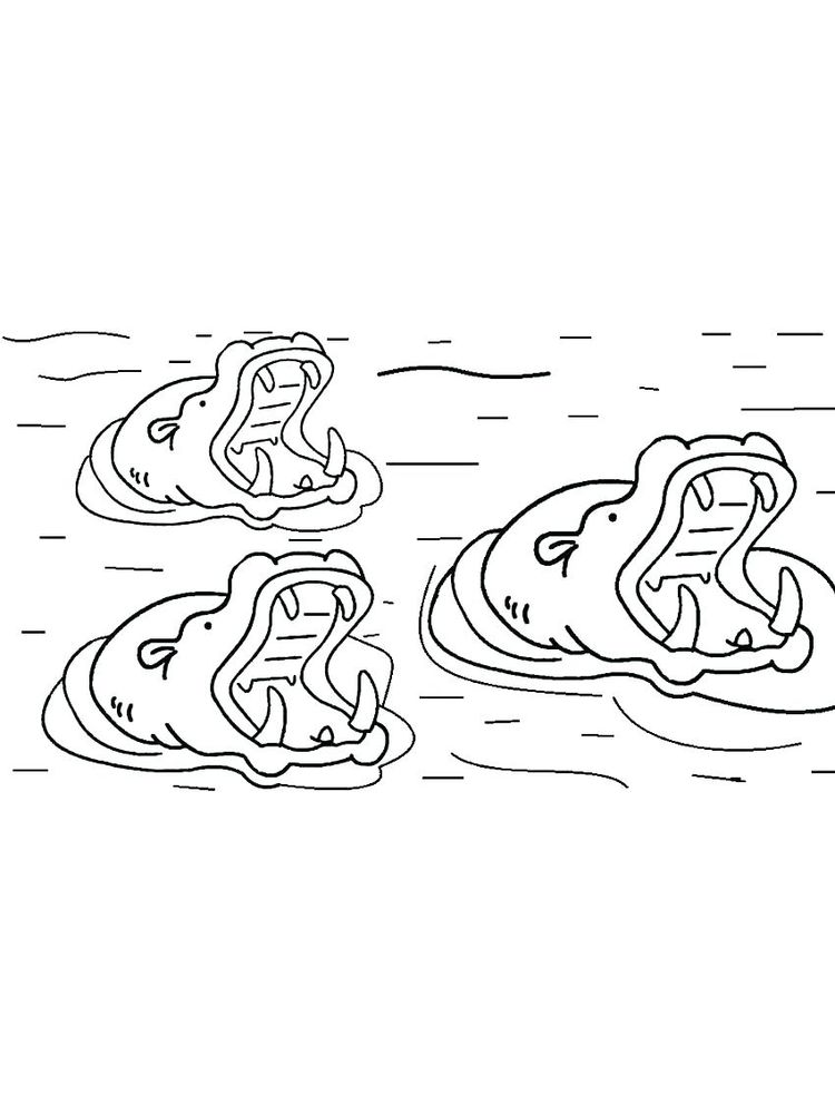 Hippo Picture Coloring Pages