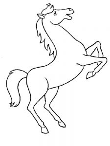 Horse And Pony Coloring Pages