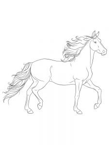 Horse Coloring And Activity Pages