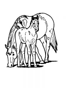 Horse Coloring Pages Free Online