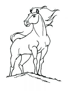 Horse Coloring Pages Pdf