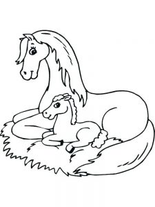 Horse Coloring Sheets For Adults