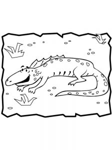 Iguana coloring pages download