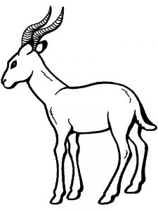Impala coloring pages print