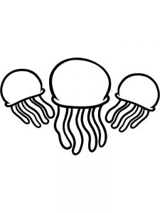 Jellyfish Coloring Sheets Kindergarten