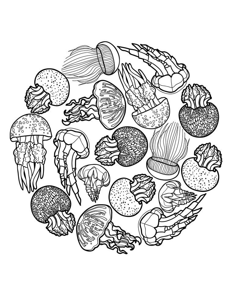 Jellyfish Mandala Coloring Pages