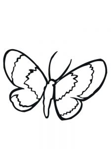 Jungle Insects Coloring Pages