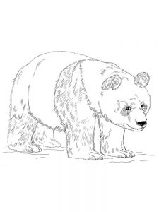 Kawaii Panda Coloring Pages