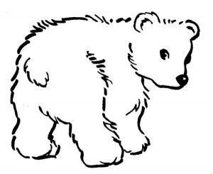 Kids polar bear coloring pages