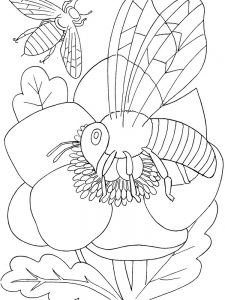 Kindergarten Insects Coloring Pages