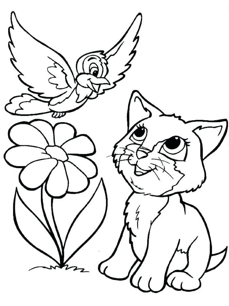 Kitten And Bird Coloring Pages