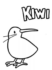 Kiwi coloring pages download