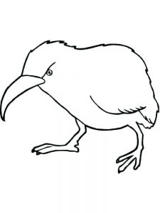 Kiwi coloring pages online
