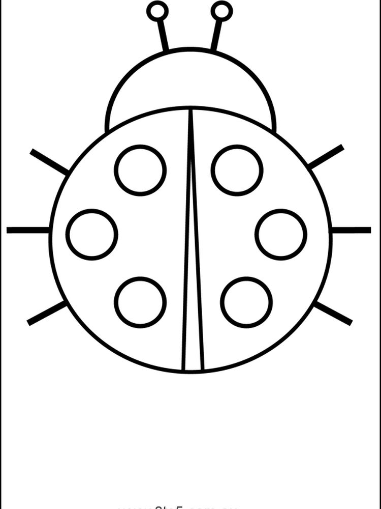 Ladybird coloring page free download