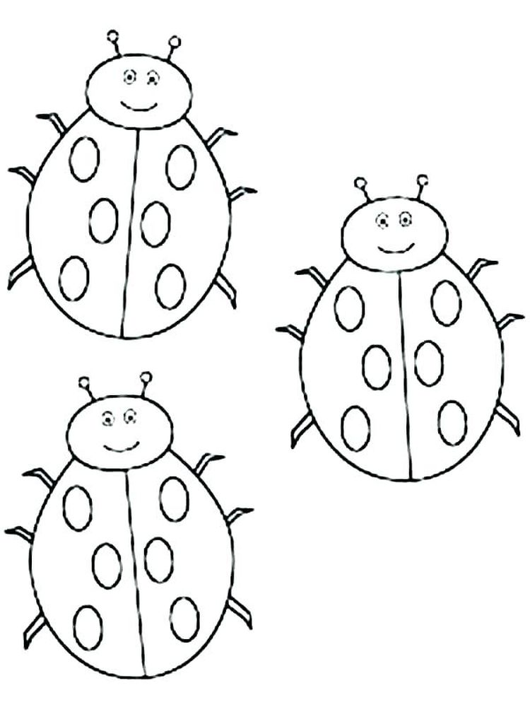 Ladybird coloring page picture