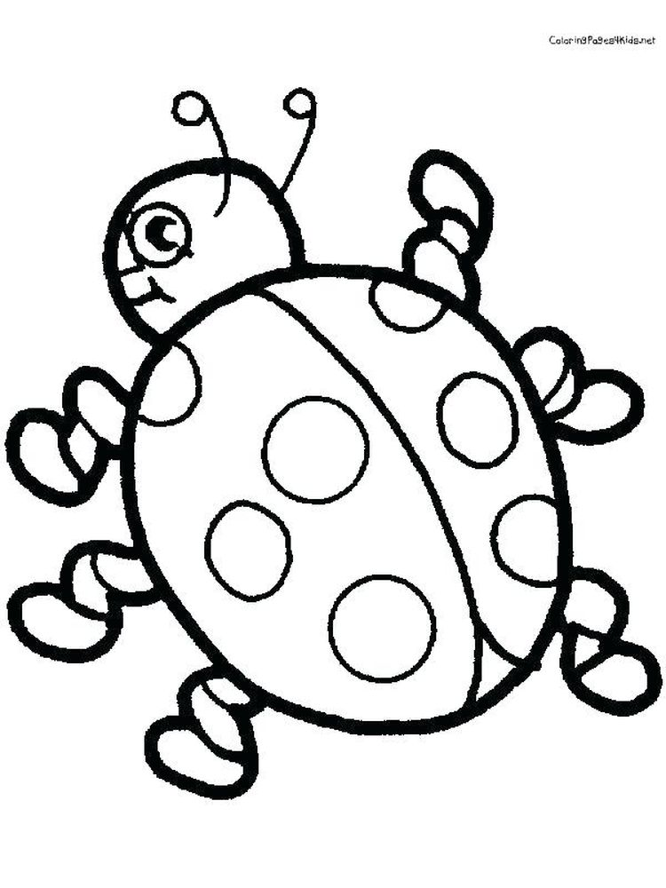 Ladybird coloring page printable
