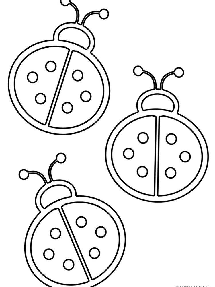 Ladybird coloring pages download