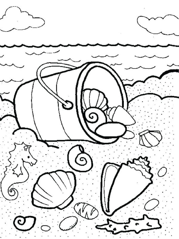 Large Shell Coloring Page