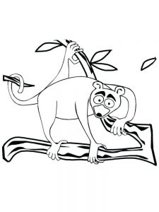 Lemur Coloring Pages free