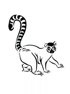 Lemur Coloring Pages pdf